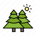fir, forest, nature, trees icon