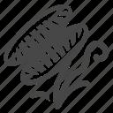 carnivorous plant, catcher, deceive, dionaea muscipula, plant, trap, venus flytrap icon