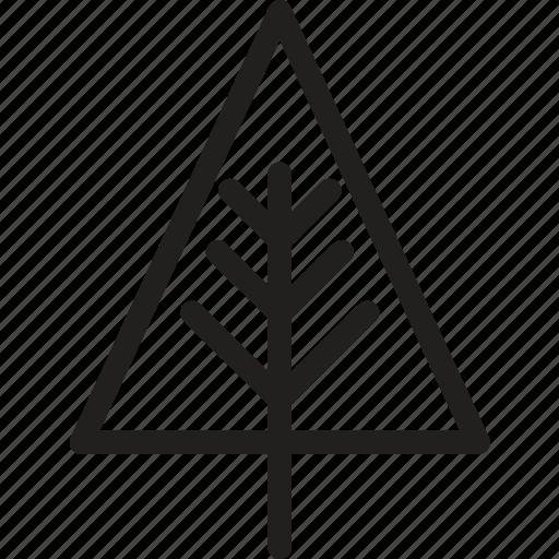 christmas, decoration, nature, pine, tree, winter, xmas icon