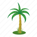 beach, cartoon, palm, plant, summer, tree, tropical icon