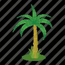 beach, cartoon, palm, plant, summer, tree, tropical