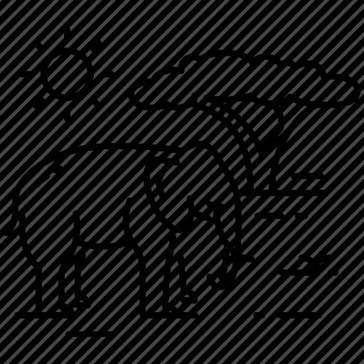 africa, elephant, safari, tourism, travel, vacation icon