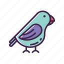 avian, bird, crow, pigeon icon