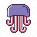 jellyfish, ocean animal, sea animal icon