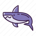 fish, shark icon