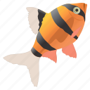 animal, animals, diet, fish, fishing, food, health, ocean, salmon, sea, seafood, seefood, water icon