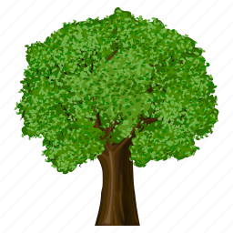 apple, apple tree, eco, ecology, environment, forest, garden, green, nature, plant, tree, wild, wood icon