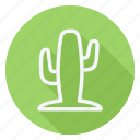cactus, holiday, outdoor, tourism, travel, tree, vacation icon