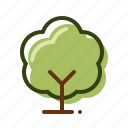 forest, nature, tree, wood icon