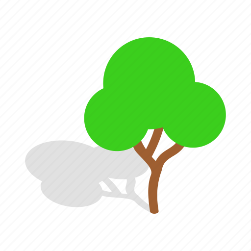 branch, forest, green, growth, isometric, plant, tree icon