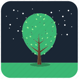 forest, nature, plant, tree, trees icon