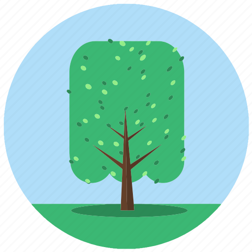 forest, jungle, leaves, nature, plant, tree, trees icon