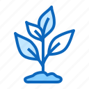 garden, growing, plant, seedling icon
