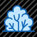bush, garden, plant, shrub icon