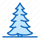 coniferous, fir, pine, tree