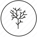 forest, outside, park, plant, tree icon