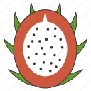 dragon, food, fresh, fruit, healthy, organic icon