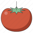 food, fresh, fruit, healthy, organic, tomato, tropical icon