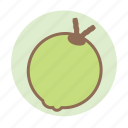 coconut, fruit, tropical icon