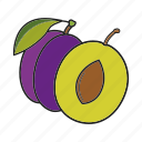fruit, plum, prune icon