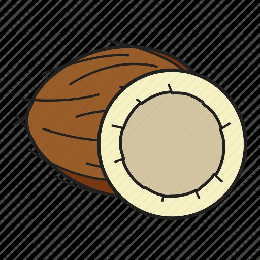coco, coconut, fruit, tropical icon