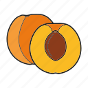apricot, fruit icon