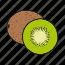 fruit, kiwi, kiwifruit, tropical