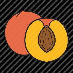 fruit, peach icon