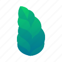 exotic, green, jungle, leaf, leaves, plant, tropical icon