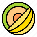fresh, fruit, melon, tropical icon