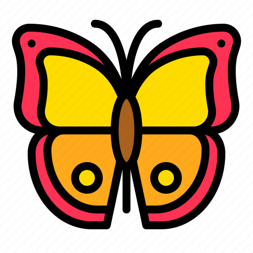 bug, butterfly, insect, tropical icon