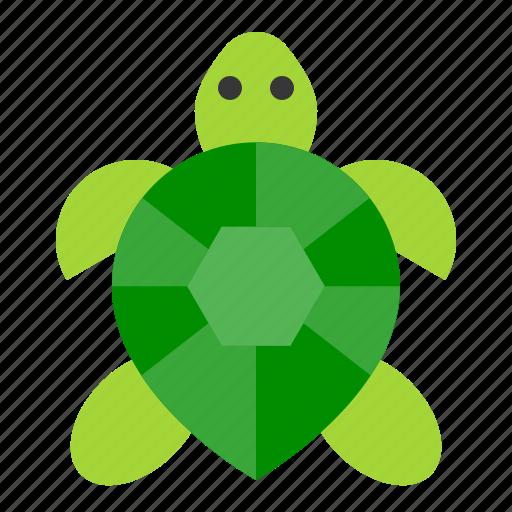 amphibian, animal, reptile, tropical, turtle icon
