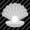 animal.pearl, seashell, shell, tropical icon