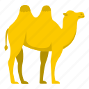 animal, camel, desert, mammal, tourism, travel, turkey icon