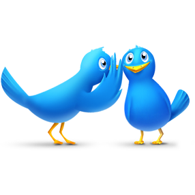 animals, bird, birds, chat, talk, twitter icon