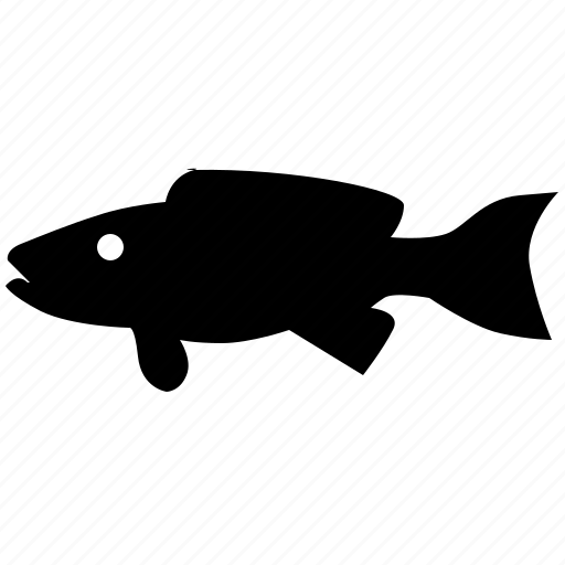 fish, footballer, ocean, predator, river icon