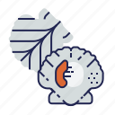 fish, food, food icon, raw food, scallop, seafood, underwater icon