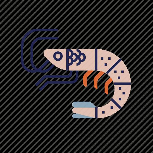 fish, food, food icon, raw food, seafood, shrimp, underwater icon
