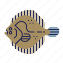 fish, food, food icon, raw food, seafood, turbot, underwater icon