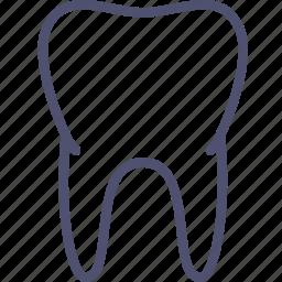 anatomy, biology, healthy, medicine, teeth, tooth icon