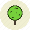 ecology, forest, nature, park, tree icon