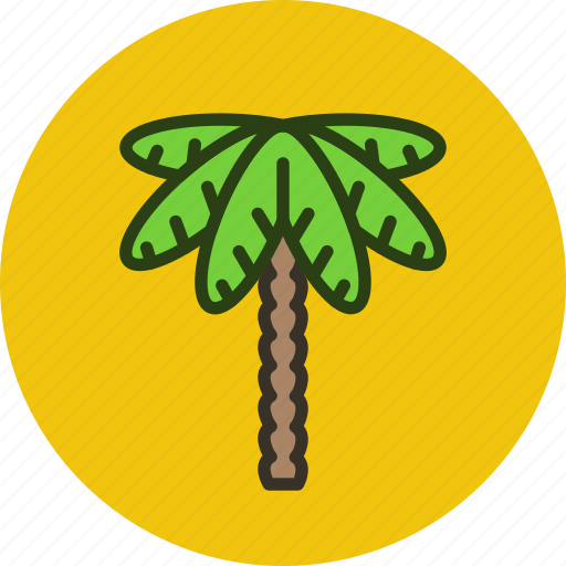 ecology, forest, nature, palm, park, tree icon