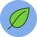 ecology, fresh, leaf, nature icon