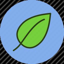 ecology, fresh, leaf, nature icon
