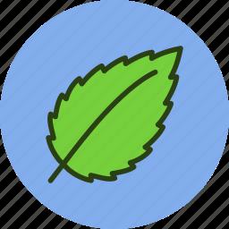 ecology, fresh, leaf, nature, news icon