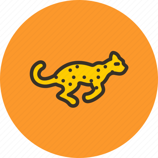 animal, cheetah, fast, leopard, nature, quick, speed icon