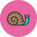 animal, helix, home, long, nature, slow, snail icon
