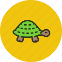 animal, long, nature, relax, slow, turtle
