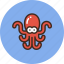animal, marine, nature, octopus