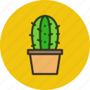 cactus, decoration, home, nature, plant, pot icon